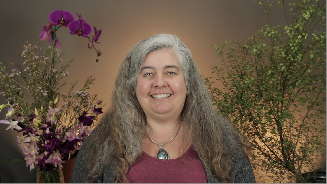 Nora Herold - Pleiadian Channel and Incarnate Guide - Home